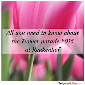 Keukenhof Flower parade 2015 tulips in holland tulipsinholland.com