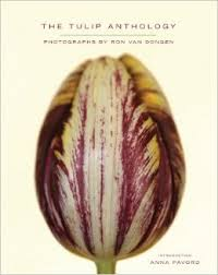 Tulip anthology ron van dongen tulips in holland tulipsinholland.com
