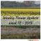 Weekly flower update week 12 2015 tulipsinholland.com