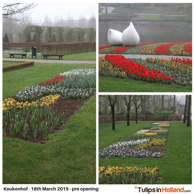 Keukenhof March 18th 2015 tulipsinholland.com 1