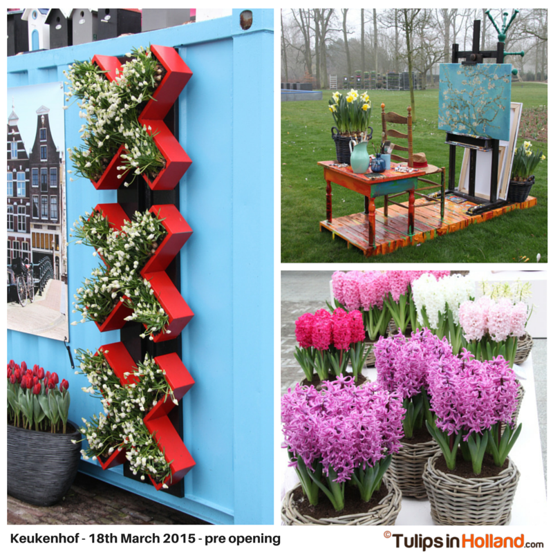 Keukenhof March 18th 2015 tulipsinholland.com 2