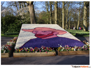 tulips in Holland photo 4