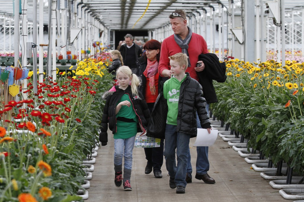 Visit the greenhouses