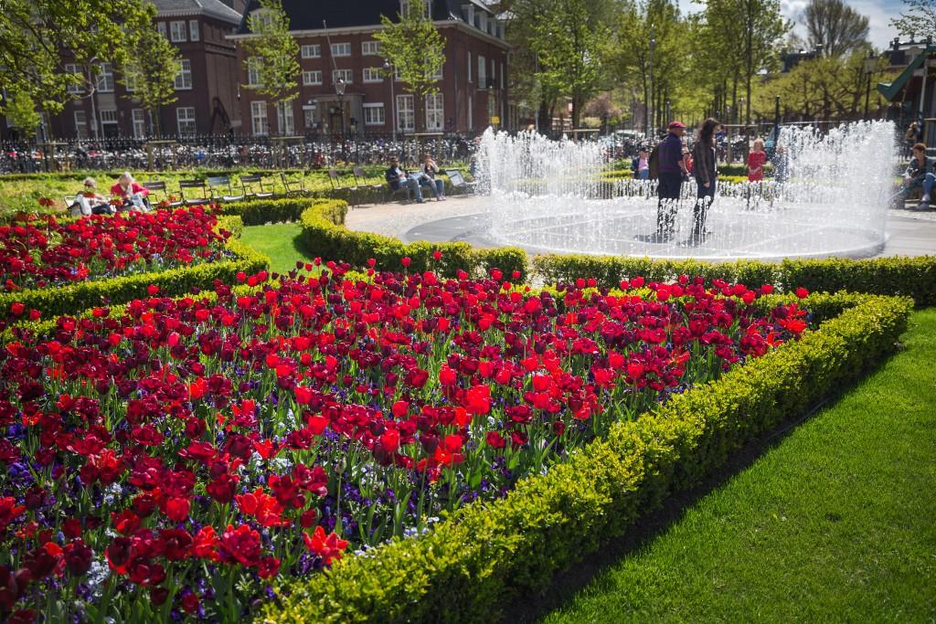 The Rijksmuseum Gardens