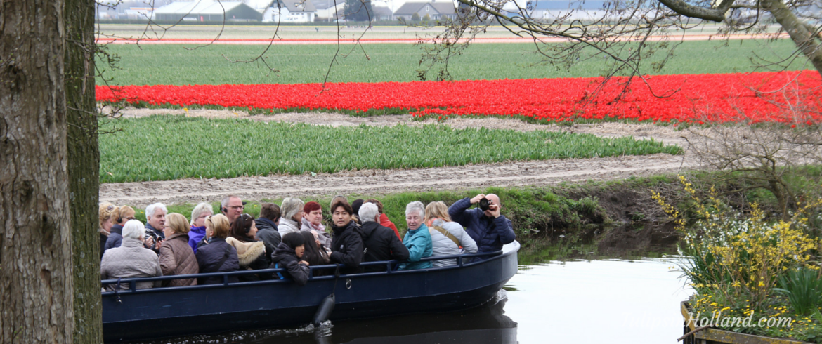 boat near tulip fields