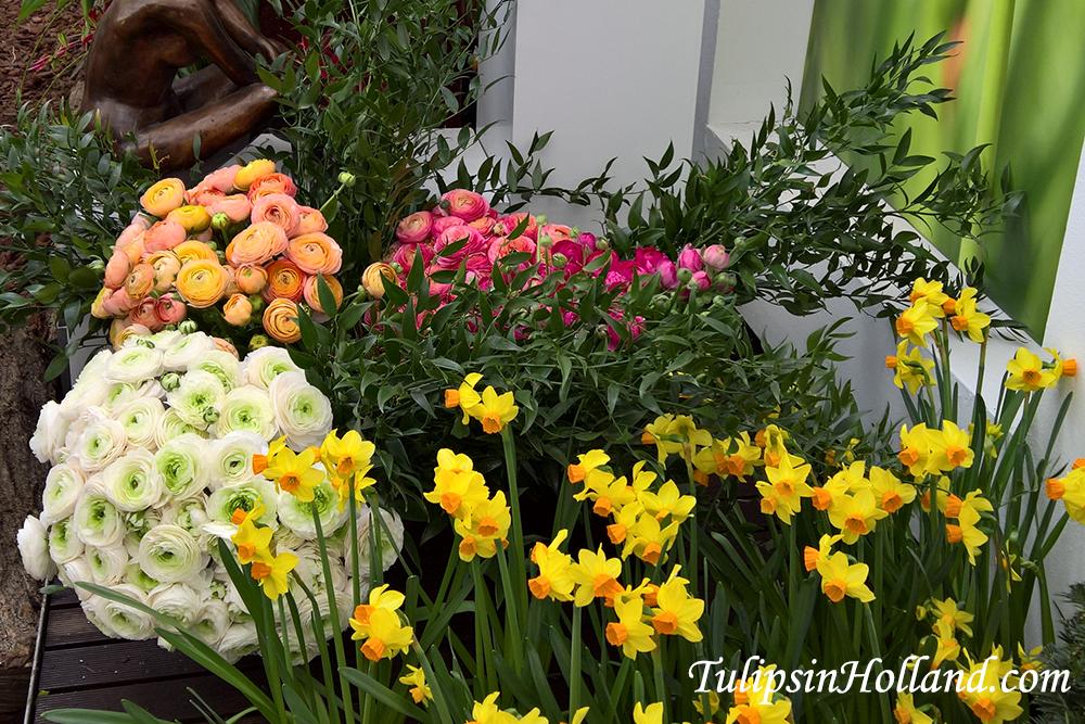 Beautiful flower gardens groot bijgaarden tulips in holland beautiful flower gardens groot bijgaarden workwithnaturefo