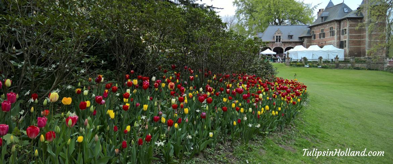 flower garden Groot-Bijgaarden