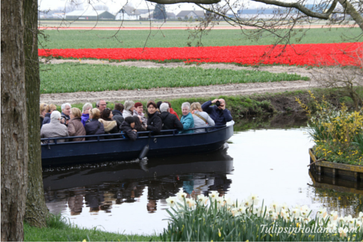 flowerfields by boat