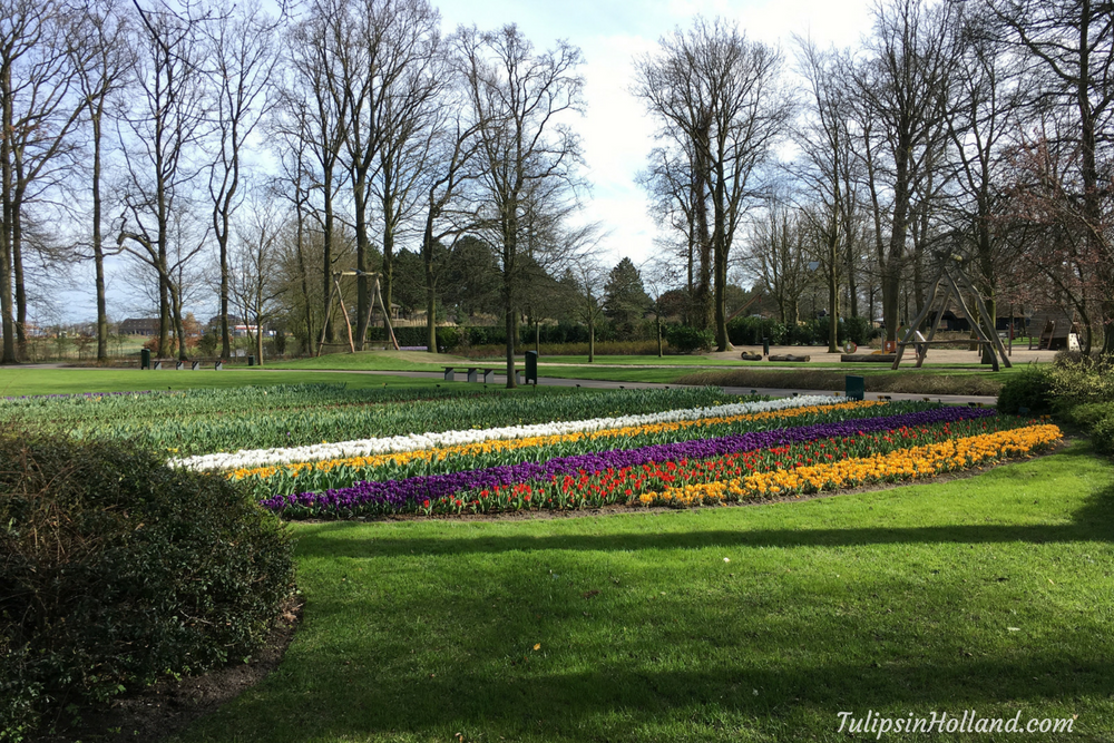 sneak preview Keukenhof 2017 1