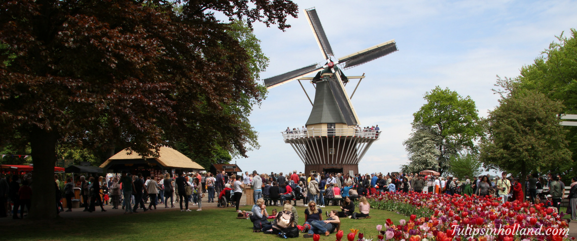 National Windmill Weekend 2017