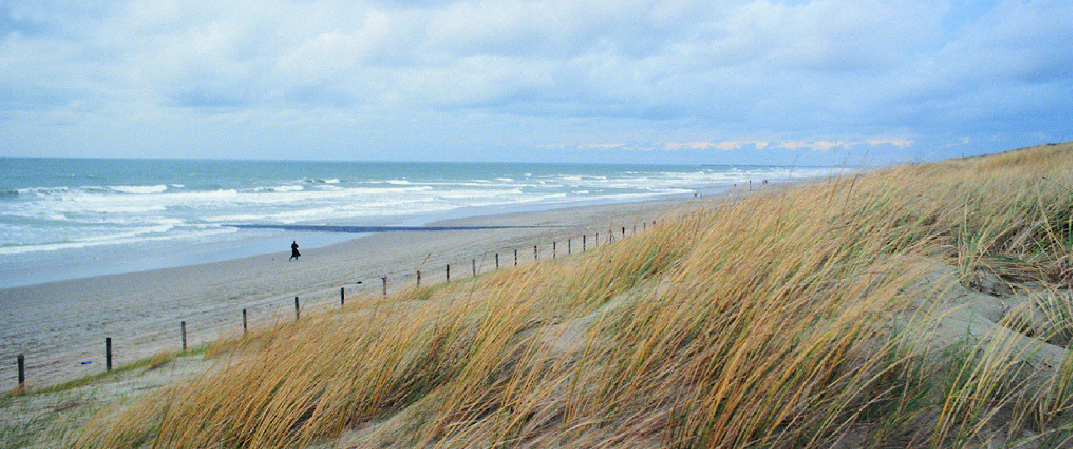 Beaches in the Netherlands